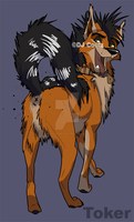 Toker the Jackal by DJCoulzAnimalsOnly