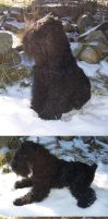 Black Russian Terrier Doll 2 by cermaith