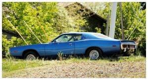 Cool Dodge Sitting In The Weeds by TheMan268