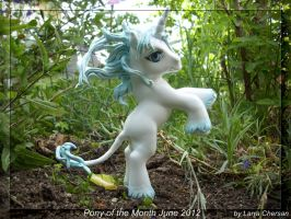 Pony of the Month June 2012 by LarraChersan