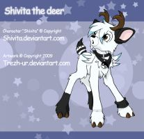 Shivita the deer by trezh-ur