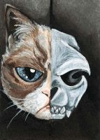 Grumpy Cat Skull by sobeyondthis
