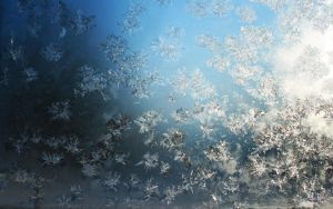 Frost Crystals: Wallpaper by Anachronist84