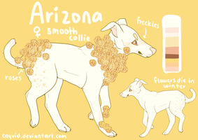 arizona rose doge by coyvid