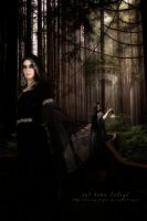 Into the Forest by RavenxCorpse