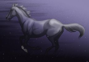 Moonlight Black Beauty by pookyns-5