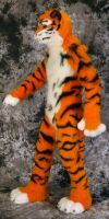 Lucky-Tiger Fursuit Photoshoot #07 by Mystic-Creatures