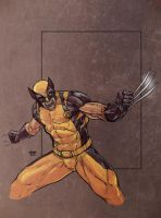 Wolvie Sketch 2.0 by SpikeSDM