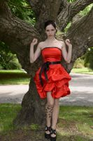 Red Satin 13 by Anariel-Stock