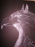 gryphon in white ink by Pittyputty