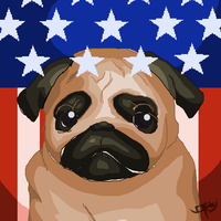 Parker the Patriotic Pug by chuckload
