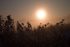 Focuspoint sun by CharmingPhotography