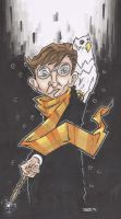 HARRY POTTER by leagueof1