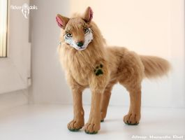 Forest wolf Tam. Home photo. by Flicker-Dolls