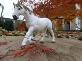 Schleich special edition 2012 (1/5) by Saerl