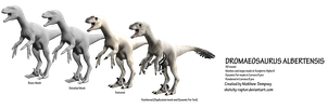 Early Attempts: Dromaeosaurus 3D model by Sketchy-raptor