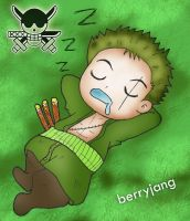 Zoro sleep time by berryjang