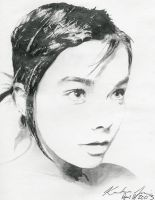 Bjork pencil by kriss41