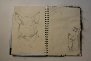 Hey Pig by TheEpilogueOfLife