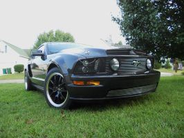 Brothers mustang 6 by MasterxZealot