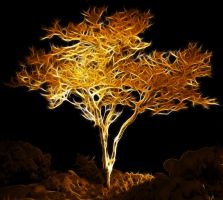 Golden tree by megaossa