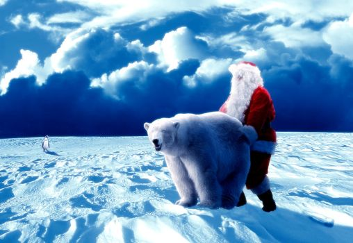 North 'Pole' by S3BR4