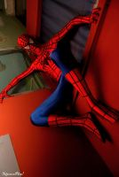 Spiderman: From the Top by C4ppi3