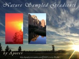 Nature Sampled Gradients by Aporev