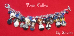 Cullen Baseball Team by Shielou