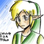 A grown up Toon Link... by LinksInMe