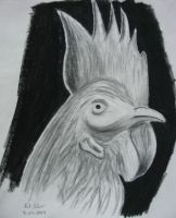Rooster number 2 by nizo