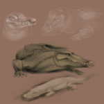 Crocodiles by Kuitsuku