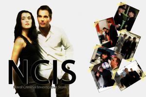 NCIS Wallpaper White by jcspenny