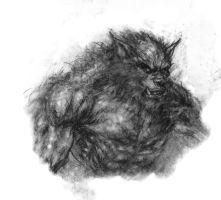 Big Bad Wolf by arjorda