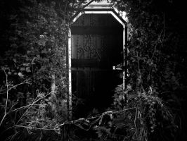 Secret Garden. by InterstellarNova