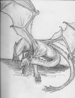 Dragon Series: 4- That one other dragon... by TheWolverineCello