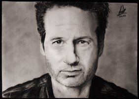 David Duchovny (a.k.a. Hank Moody) portrait by deusexmachina-art