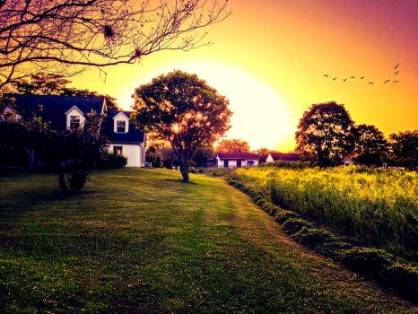 Farm House Sunset by Izzie-Hill