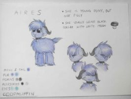 MLP fim: Aires Reeference Sheet by GoodMuffin