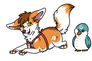 Unique Corgi-Fox Adoptable with Friend! (CLOSED) by SierratheSharkDoge