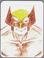 DEC Wolverine Brown and Yellow by s133pDEADart