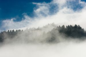 Morgennebel 2 by MarcZingg