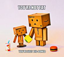you're not fat ... by marjol3in1977