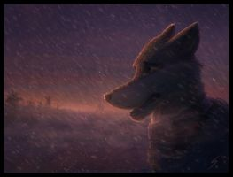 A Winter's Dawn by Temiree