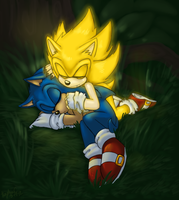 Gift - FleetwaySuperSonic and Sonic - Old Days by WhiteRaven4