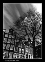 Buildings and Tree - Amsterdam by inessentialstuff