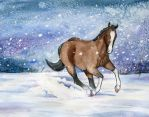 Equine Exchange: In the Snow by Stormslegacy