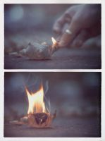 Embrace it... and let it burn by Wnison
