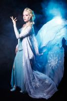 Elsa, the Snow Queen. by RehnCetra