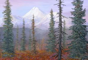 alaska boreal forest attempt by andrekosslick